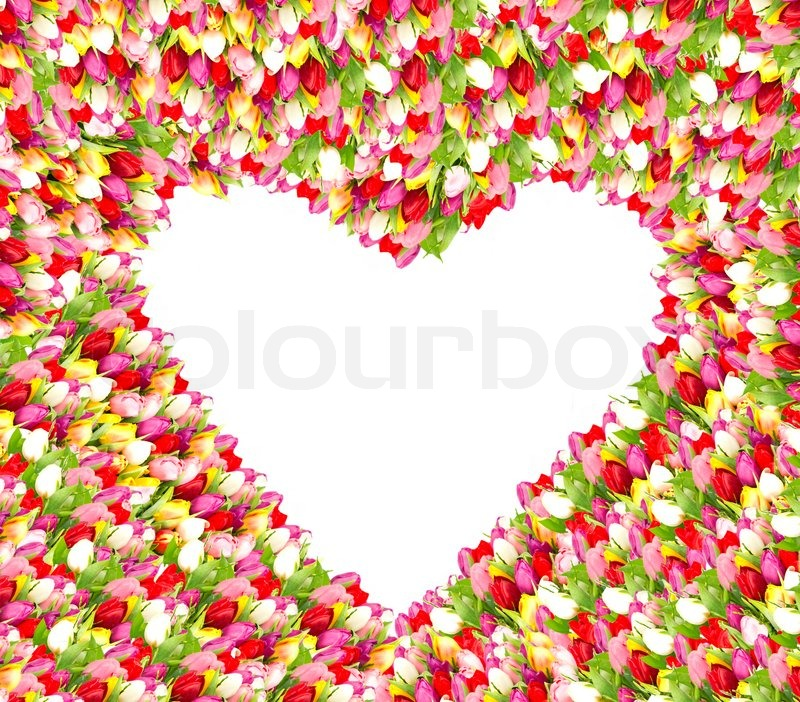 Beautiful Flower Frame In Heart Shape Stock Photo