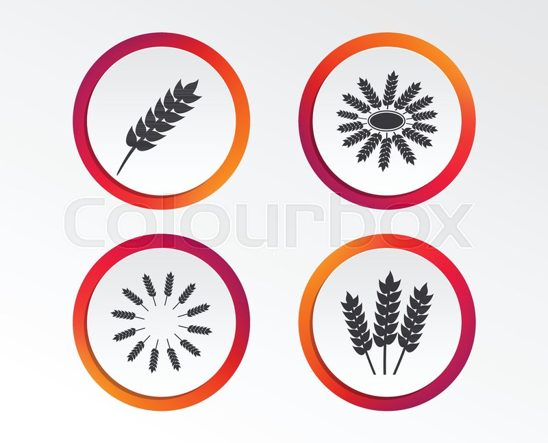 Agricultural icons  Gluten free or No     | Stock vector | Colourbox