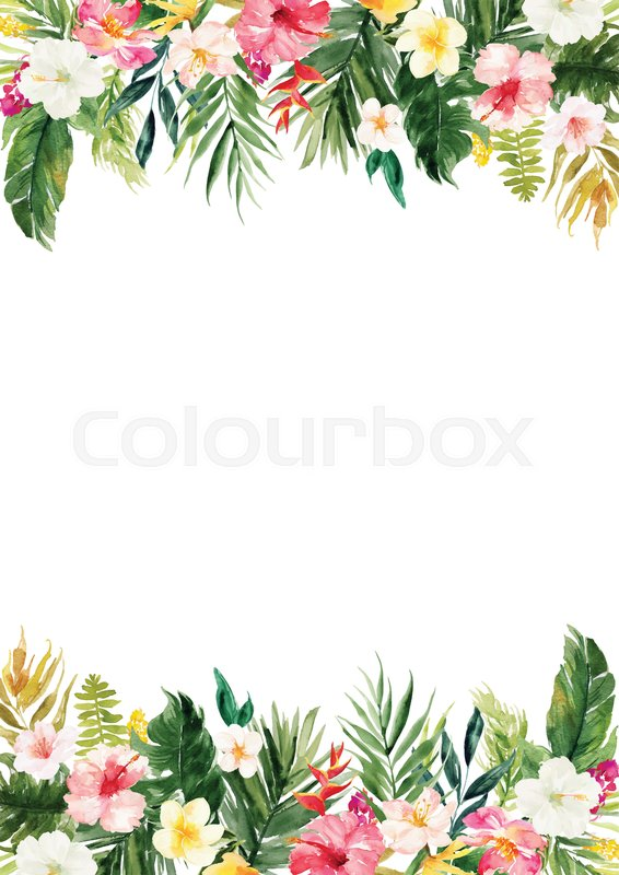 The vertical white blank paper background with colorful plants and flowers border stock vector colourbox the vertical white blank paper background with colorful plants and flowers border stock vector colourbox mightylinksfo