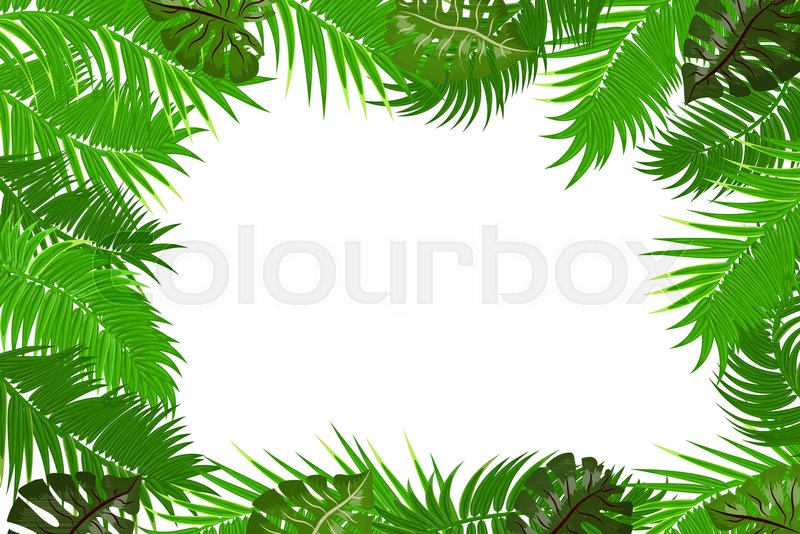 Web summer jungle frame banner. Green palm leaves template isolated ...