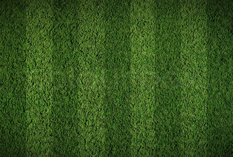 Football field turf texture