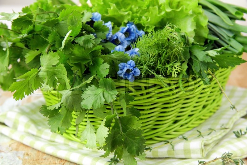 Fresh green grass parsley dill onion herbs mix stock photo colourbox - Tips planting herbs lovage parsley dill ...