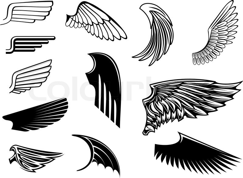 Line Art Vector Tutorial : Set vogel flügel für heraldik design stock vektor
