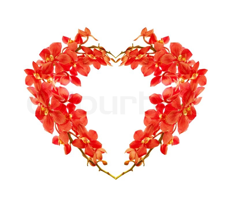 Red Orchid Flower Heart Natural Floral Symbol Isolated On White