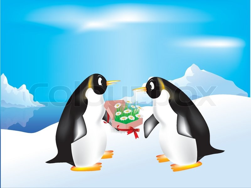penguins and a gift of flowers stock vector colourbox