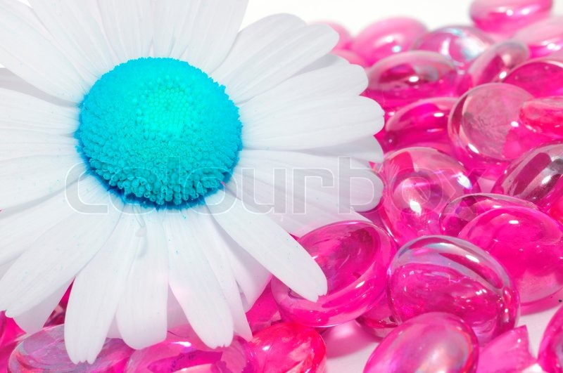 Stock image of 'Creative Daisy with Blue Middle on Pink Glass Stones'