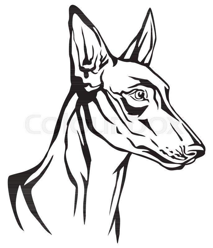 Decorative portrait in profile of dog ... | Stock vector | Colourbox