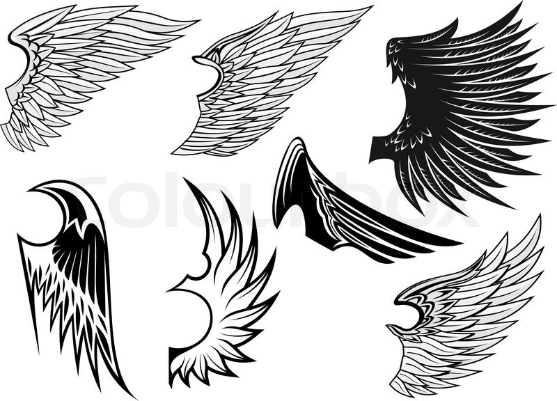 Set Of Bird Wings For Heraldry Design Isolated On White