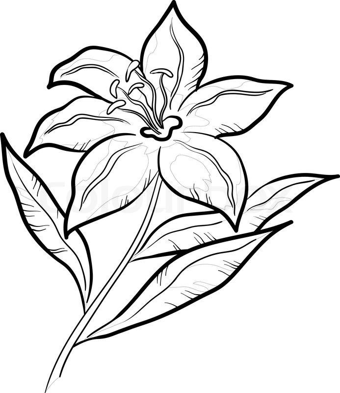 Blume grafisches Symbol , Piktogramm stilisierte Symbol, isoliert ...