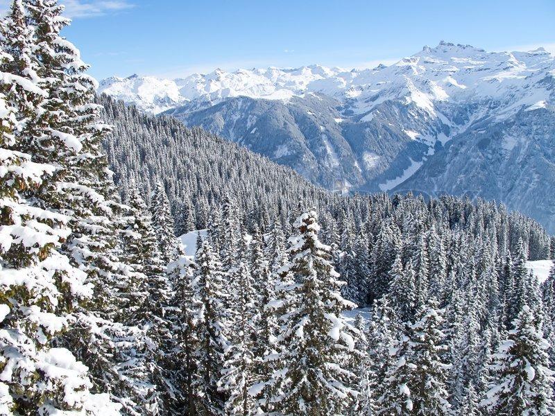 winter in the swiss alps  switzerland