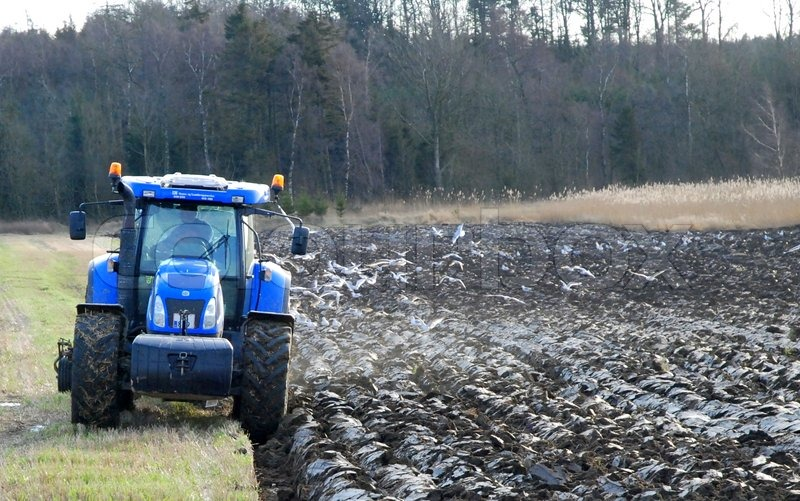blue tractor ploughing the field stock photo colourbox