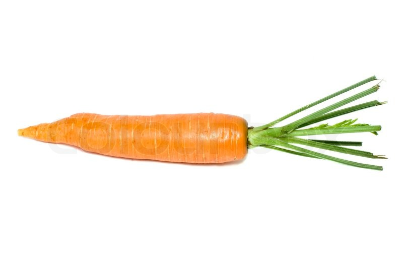 single carrot isolated on the white background stock