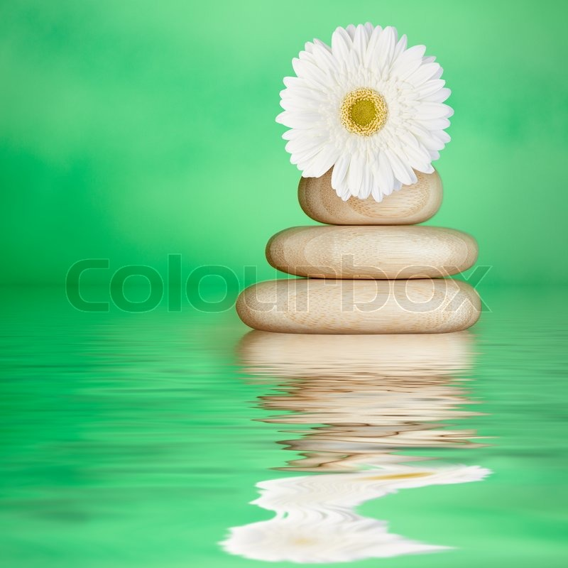Tranquil green spa water background with bamboo wood stones white daisy flower stock photo - Impressive house with tranquil environment to get total relaxation ...