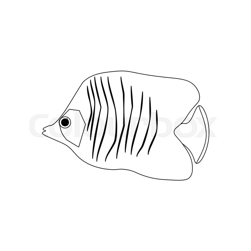 Chaetodon Auriga Butterflyfish Coloring Pages On The White