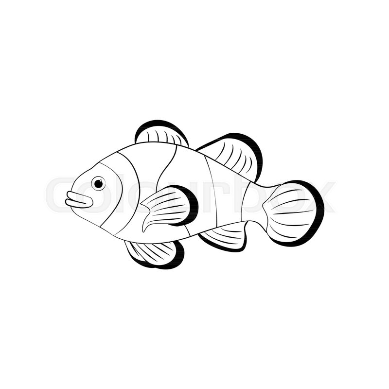 Clownfish Coloring Pages On The White Stock Vector Colourbox