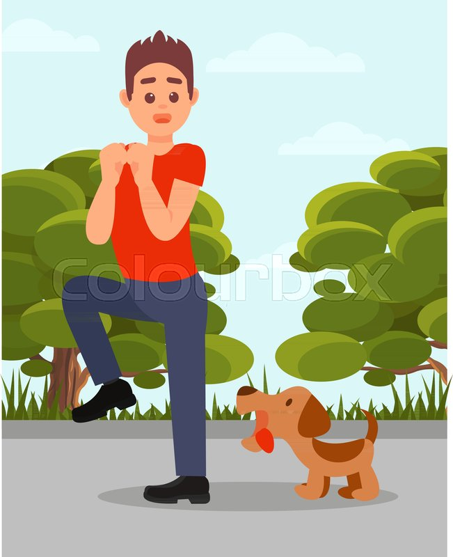 Small Angry Dog Barking At Man Young Stock Vector Colourbox