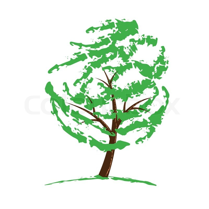 Green Tree Drawing Isolated On White Vector Illustration