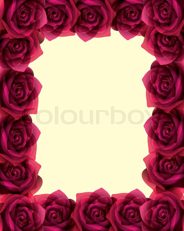 Vector frame with beautiful roses   Stock Vector   Colourbox