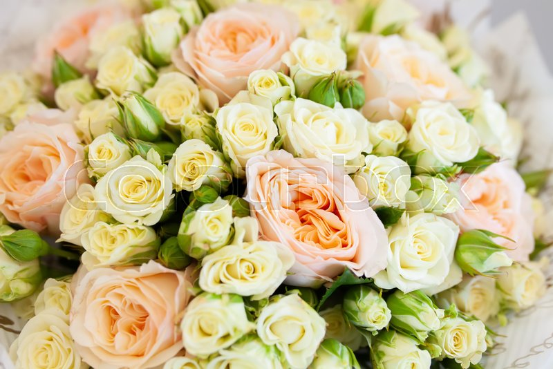 A Bouquet Of Small Pink And White Roses Stock Photo Colourbox