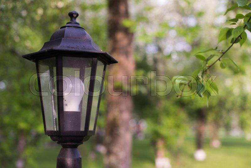 LED street lamp. Retro style lantern with modern lighting technology. Green background, stock photo