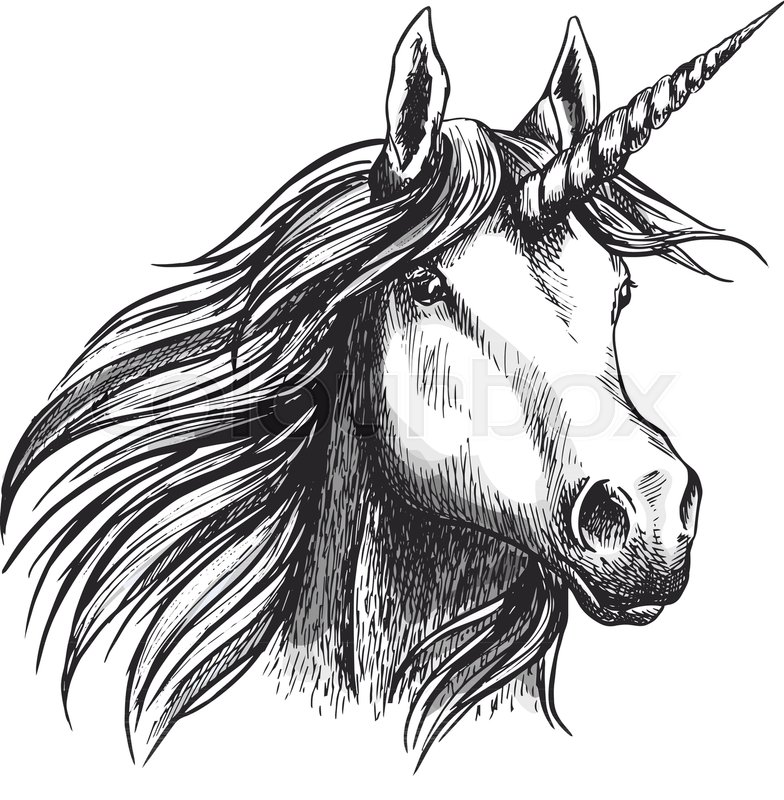 Unicorn head sketch icon of fairy tale mystic horse with magic horn ...