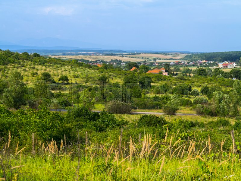 View of a green valley with a village in it. Most of the roofs of houses in the village are red, stock photo