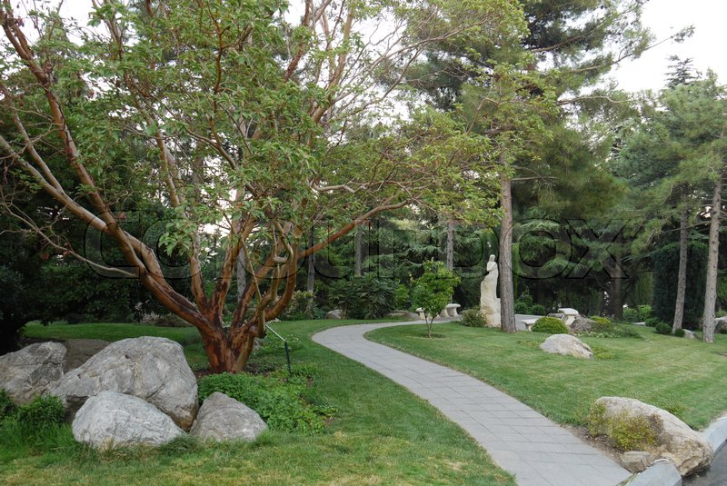 A green park with beautiful sculptures of sprawling trees and figured stones lying along the path, stock photo
