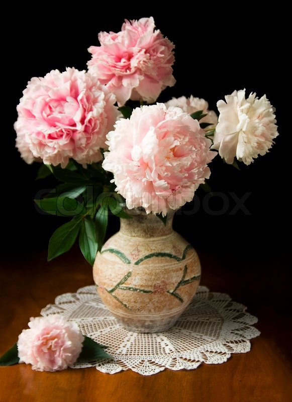 Still Life With Pink Peony In Vase Stock Photo Colourbox