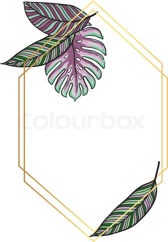 Trendy Tropical Leaves Vector Design Stock Vector Colourbox Find the best free stock images about palm leaves. trendy tropical leaves vector design