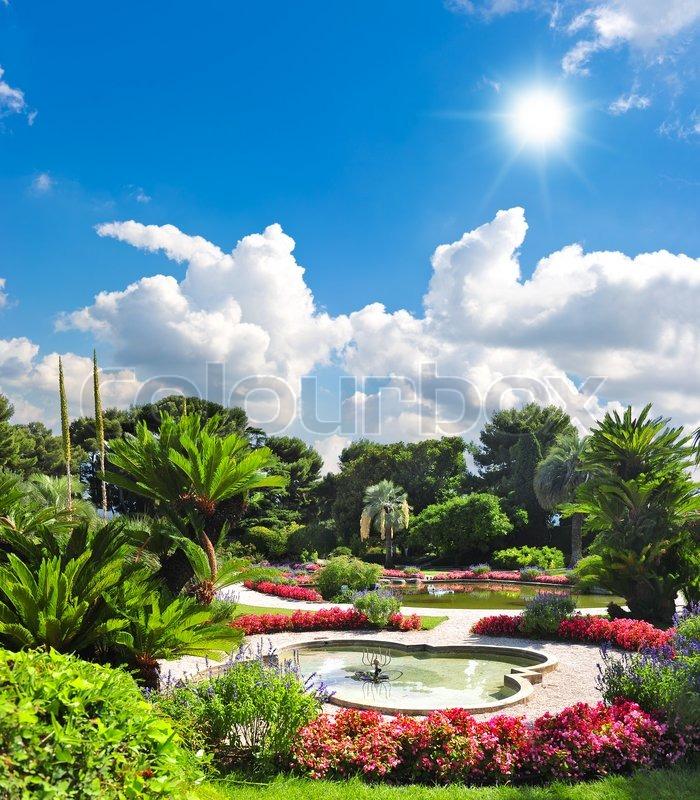 Beautiful mediterranean garden. french riviera, Nice, Cote d\'Azur, stock photo
