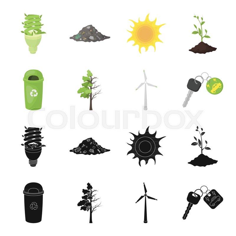 A Garbage Can A Diseased Tree A Wind Turbine A Key To A Bio Car