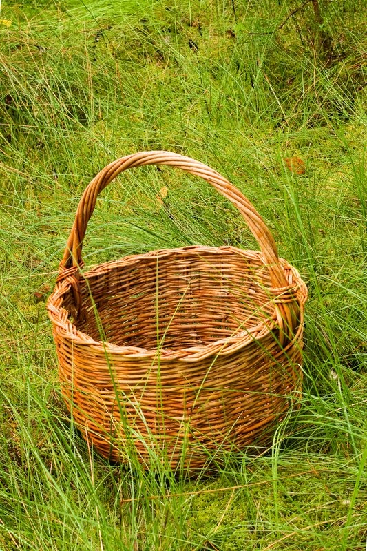One Big Empty Woven Basket In The High Grass