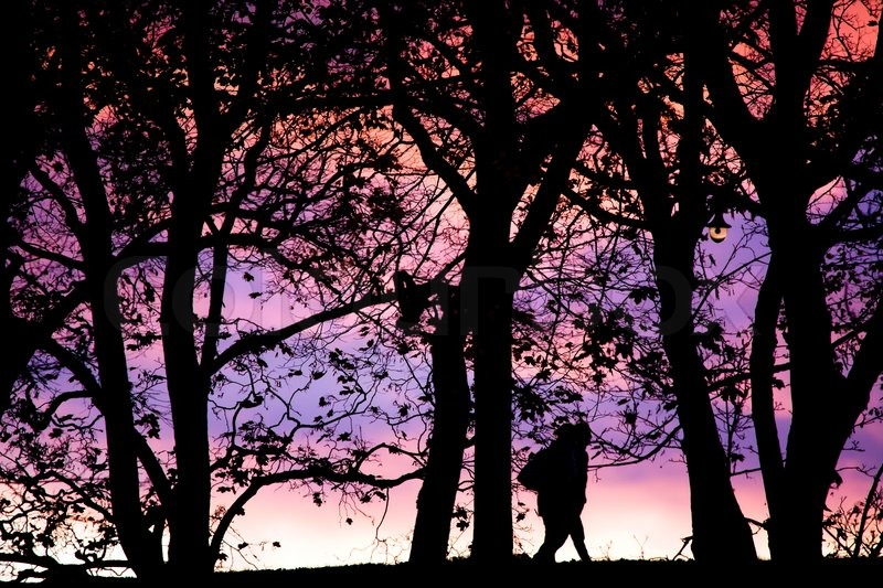 Young people silhouette photos about landscape outdoor, stock photo