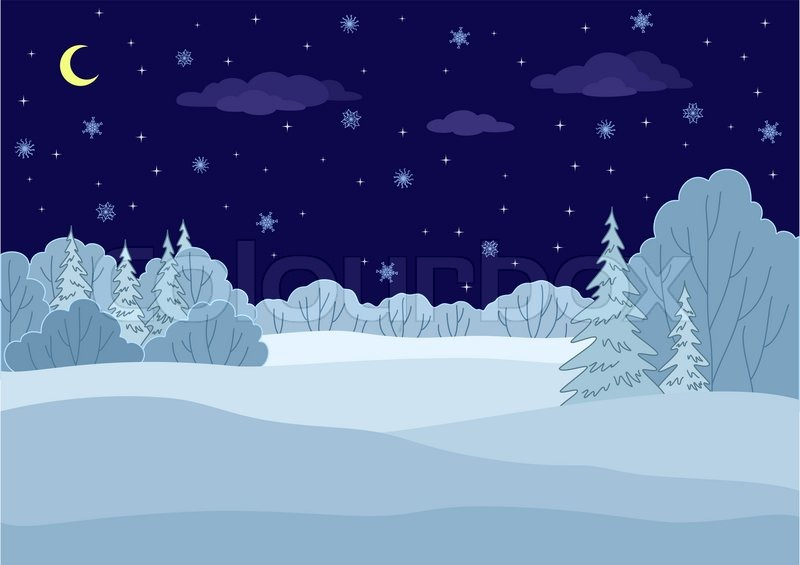 landscape  winter forest night  coniferous and deciduous trees under stars