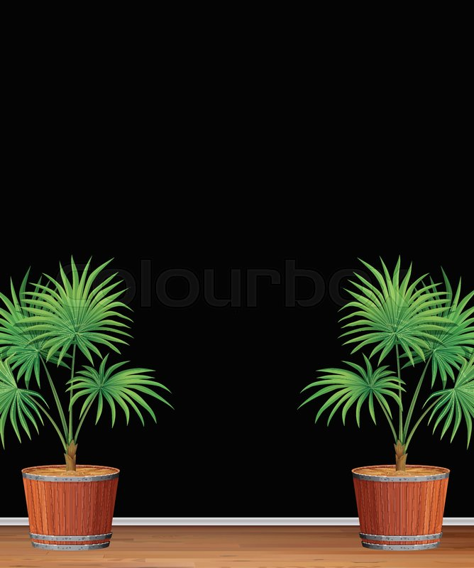 Decorative Indoor Palm Tree Template Illustration Stock Vector