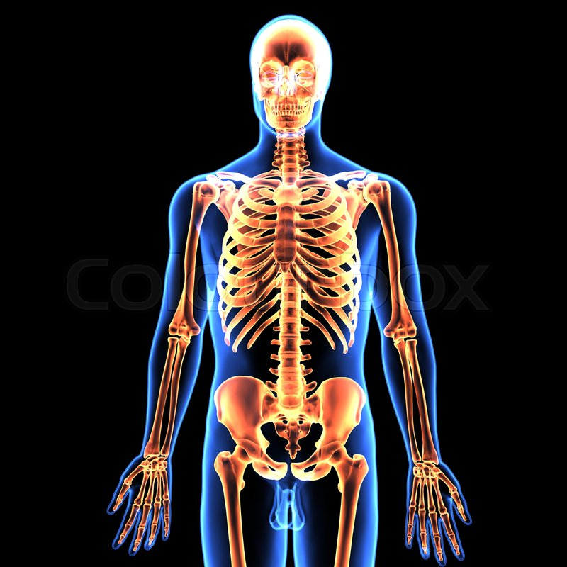 3d Illustration Of Human Being Stock Photo Colourbox