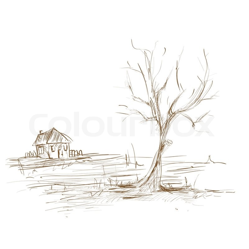 how to draw a tree landscape