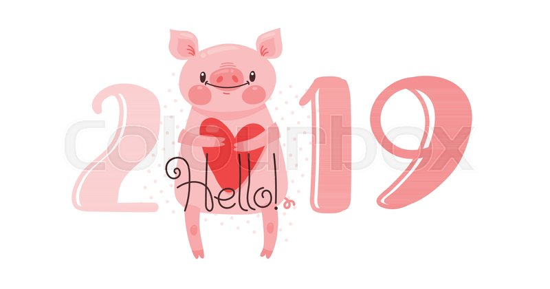 2019 happy new year card design vector illustration with 2019 numbers and sweet pig greets with love figures and symbol of year chinese calendar in