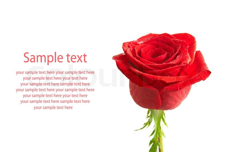 Flower Text Art Symbols - Flowers Ideas