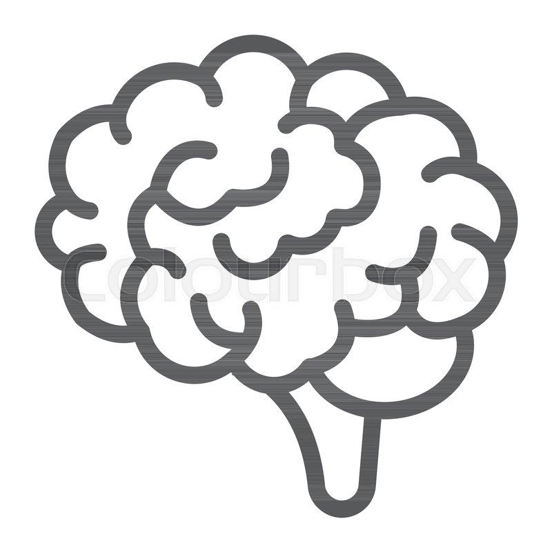 Brain Line Icon Anatomy And Vektorgrafik Colourbox