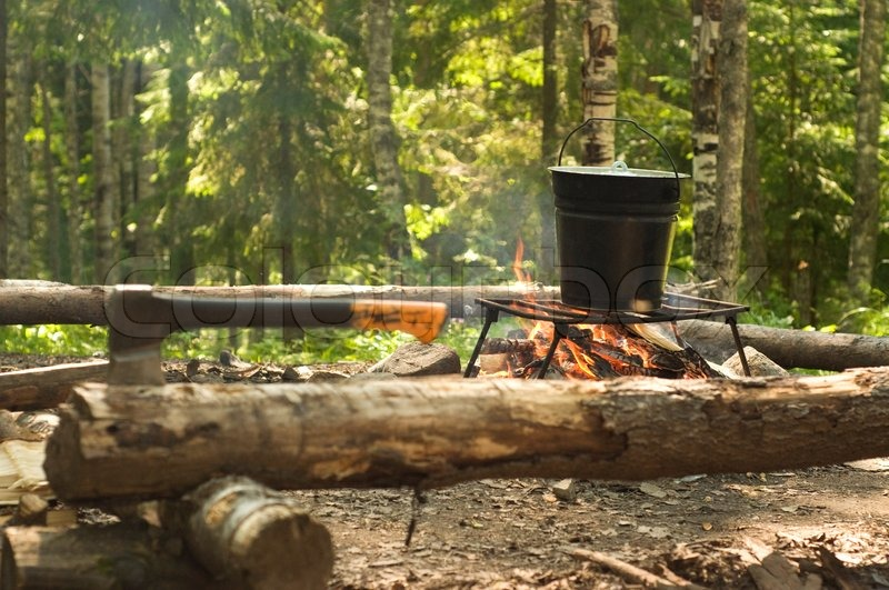 Camping In The Woods With A Fire Forest Stock Photo