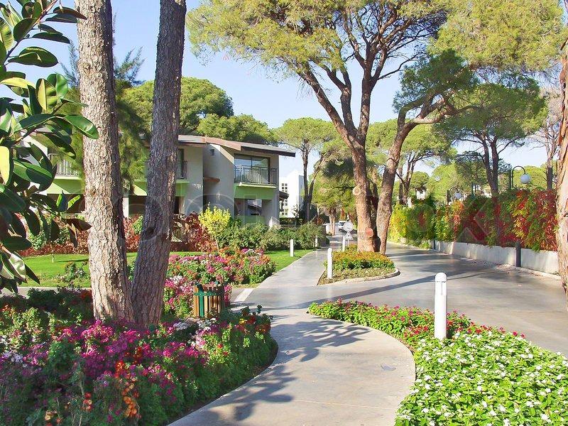 Luxury hotel garden, stock photo