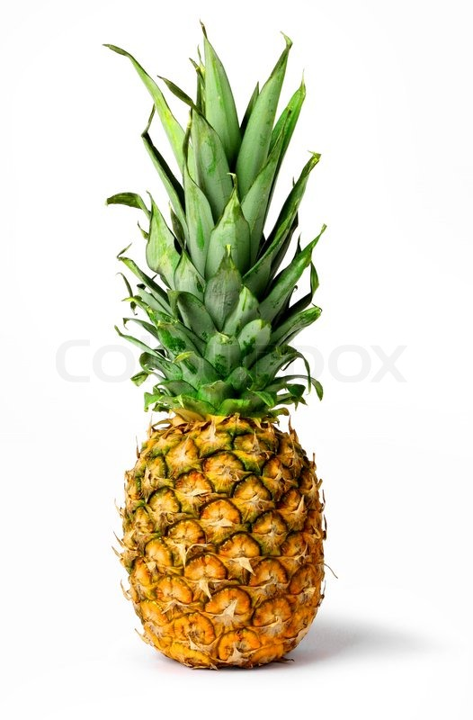 fresh pineapple fruit isolated stock photo colourbox leaf clip art black and white leaf clip art fall