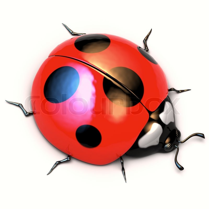 A 3d Illustration Of Ladybird Isolated On White Background | Stock Photo | Colourbox