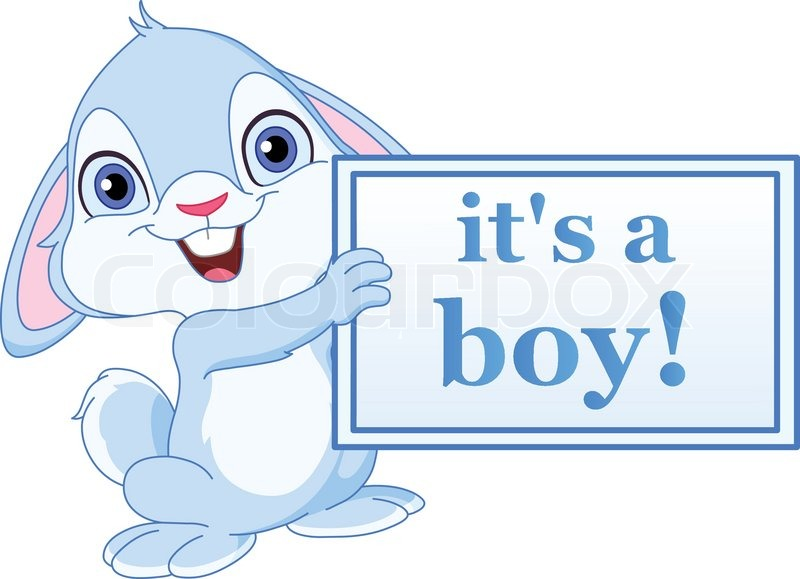 baby bunny holding its a boy sign stock vector colourbox