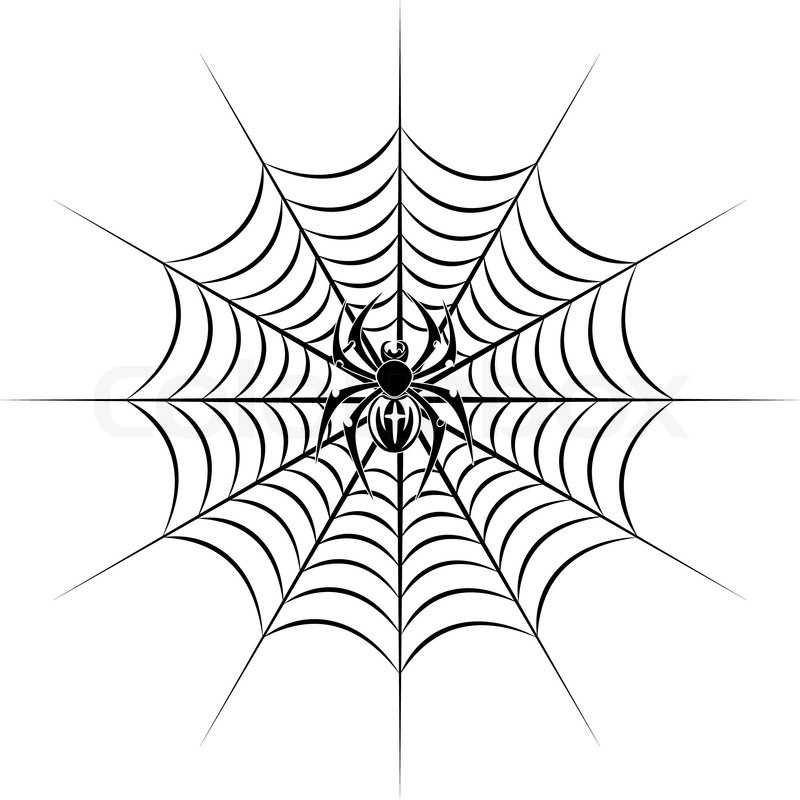Spider On Web In Tribal Style For Stock Vector Colourbox