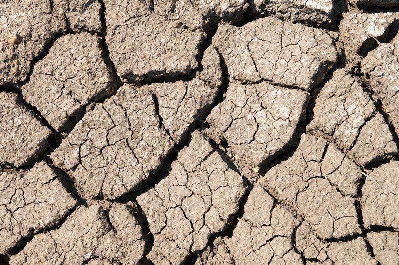 Cracked arid soil | Stock Photo | Colourbox