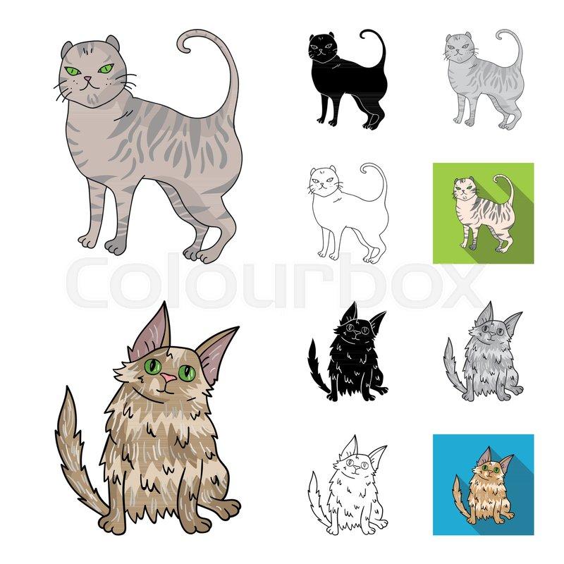 Breeds Of Cats Cartoonblackflatmonochromeoutline Icons In Set