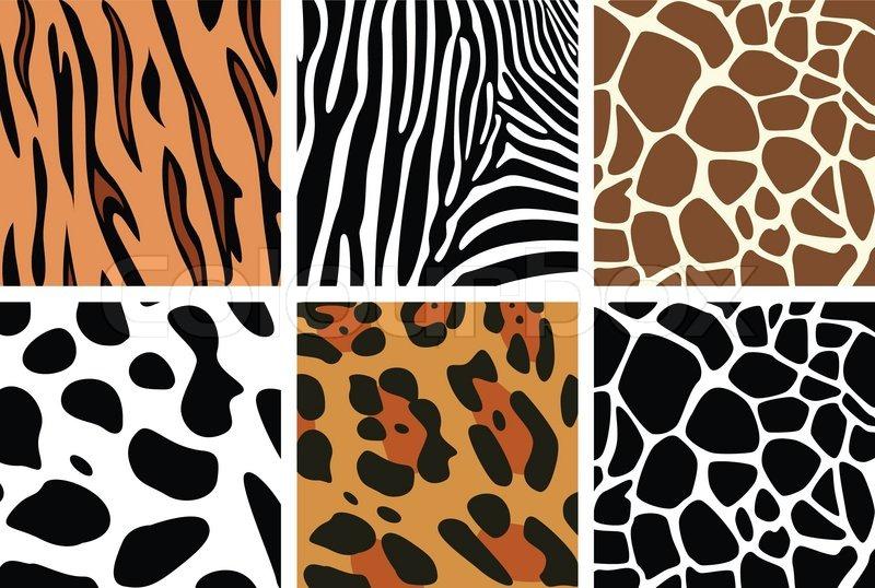 vector animal skin textures of tiger  zebra  giraffe animal pattern vector zebra pattern vector images