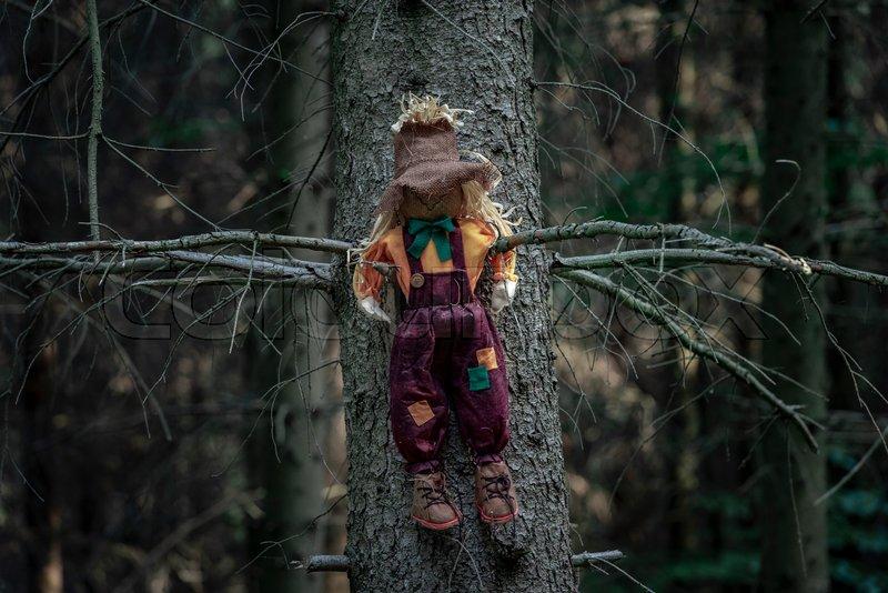 фото чучело в лесу благодаря